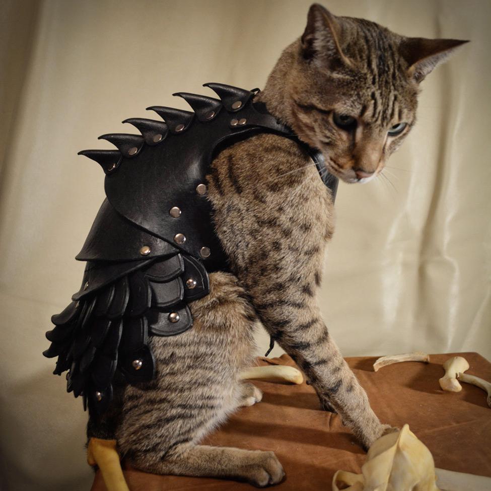 Cat Battle Armor Bespokebug